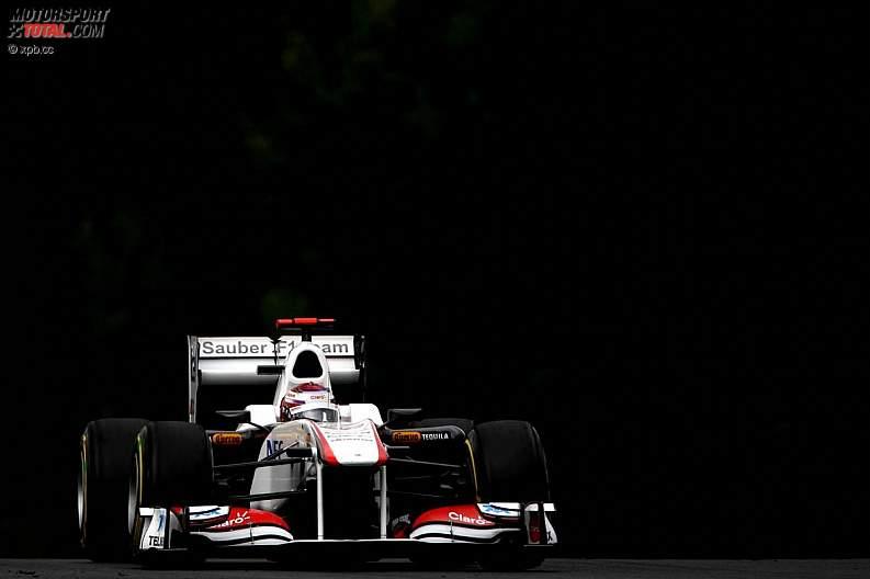 -Formula 1 - Season 2011 - z1311938617