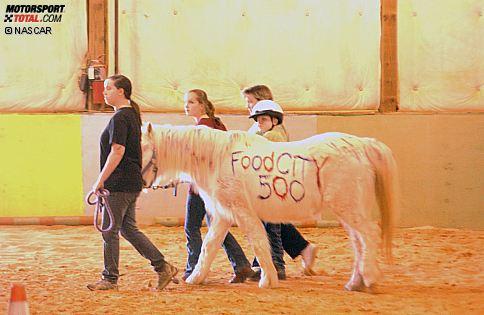 Promotion für das Food City 500 von Bristol