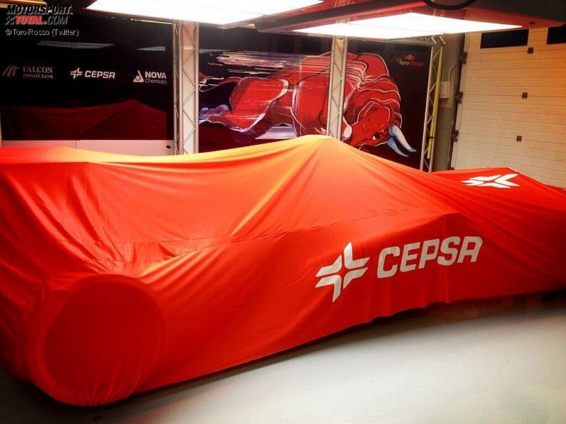 Formula 1- Season 2013 - z1359998476