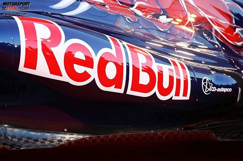 Formula 1- Season 2013 - z1360000258