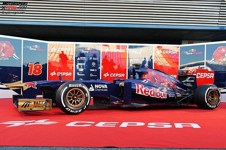 Formula 1- Season 2013 - z1360000347