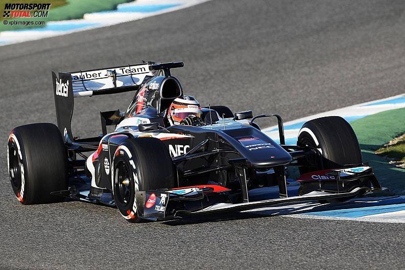 Formula 1- Season 2013 - z1360059628