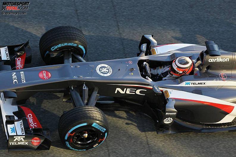 Formula 1- Season 2013 - z1360059701