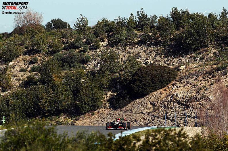 Formula 1- Season 2013 - z1360077672
