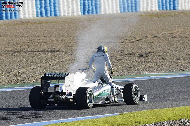 Formula 1- Season 2013 - z1360086079