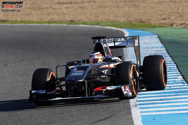 Formula 1- Season 2013 - z1360088422