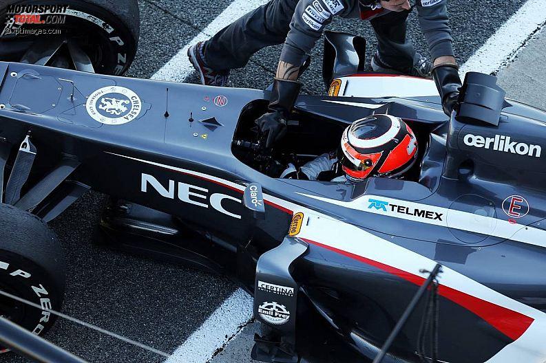 Formula 1- Season 2013 - z1360089643