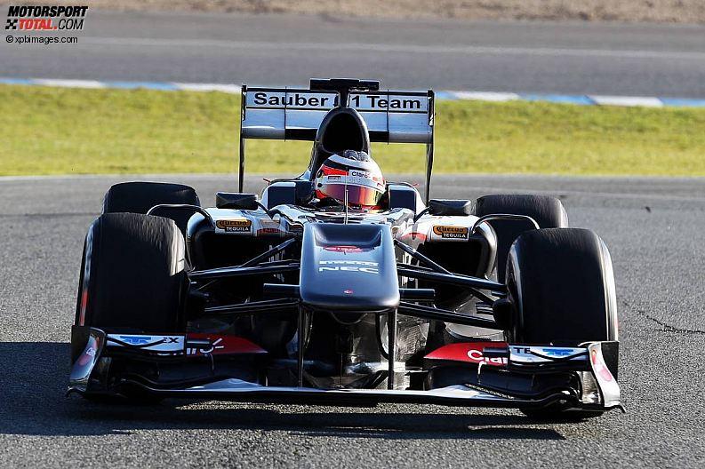 Formula 1- Season 2013 - z1360091443