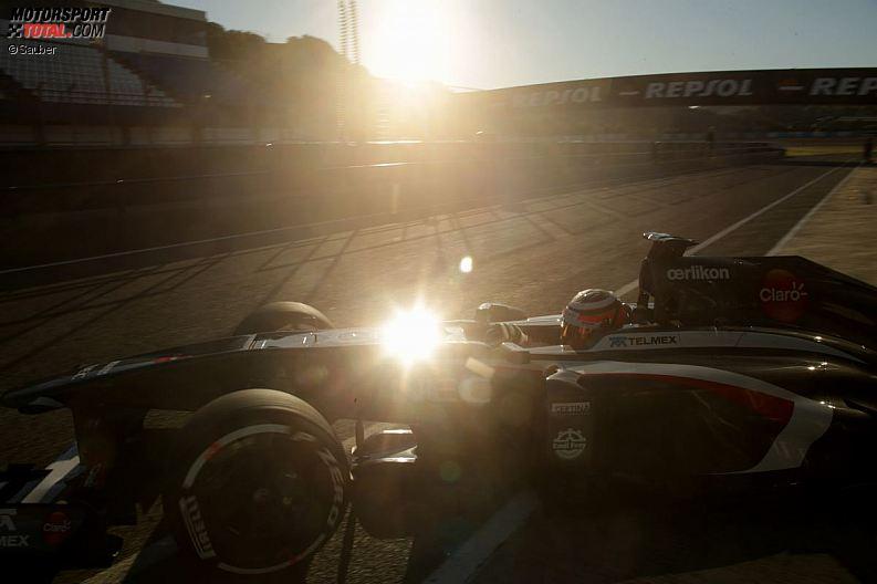Formula 1- Season 2013 - z1360103692