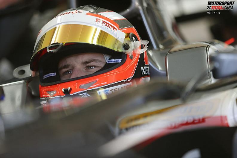 Formula 1- Season 2013 - z1360103715