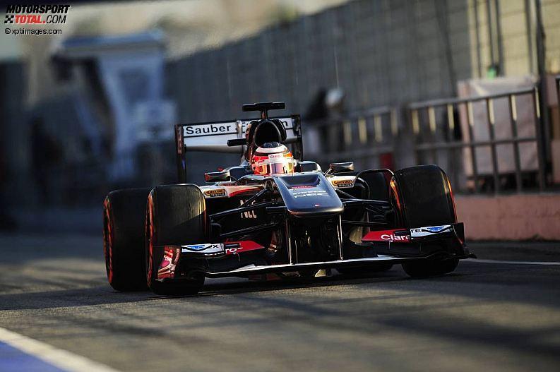 Formula 1- Season 2013 - z1361358038
