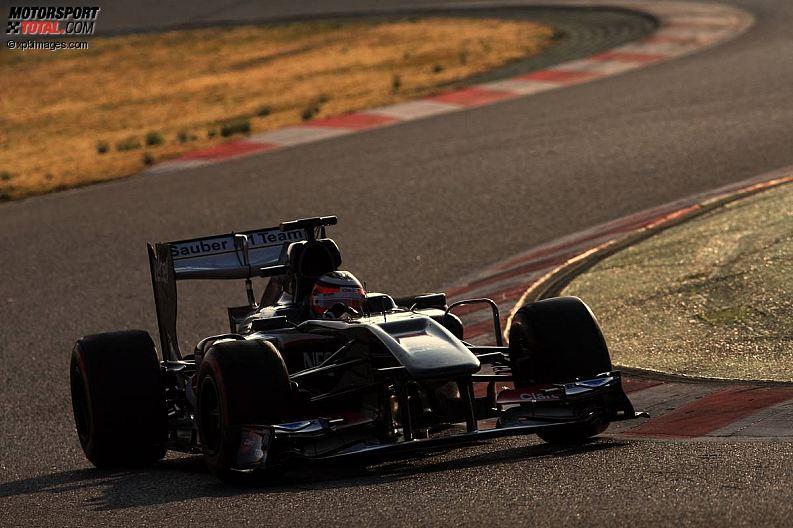 Formula 1- Season 2013 - z1361367057