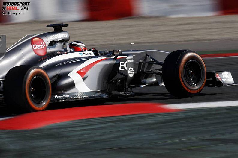 Formula 1- Season 2013 - z1361368854