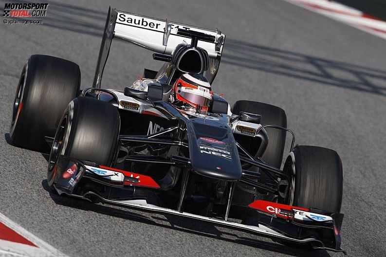 Formula 1- Season 2013 - z1361368876