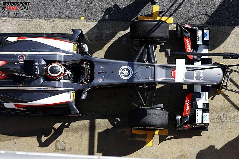 Formula 1- Season 2013 - z1361369490