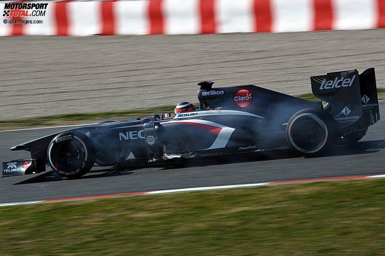 Formula 1- Season 2013 - z1361371885