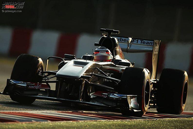 Formula 1- Season 2013 - z1361382106