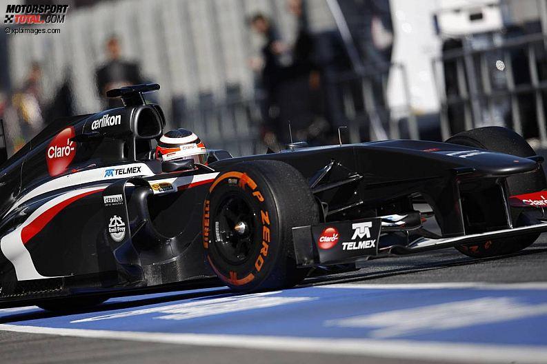 Formula 1- Season 2013 - z1361385681