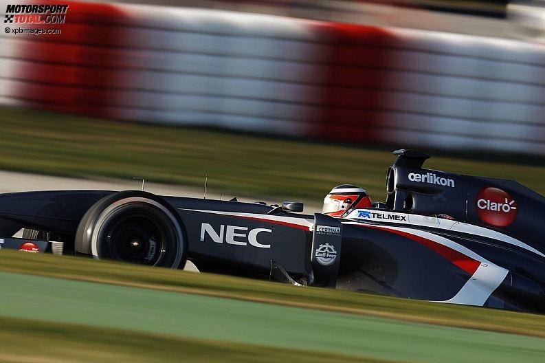 Formula 1- Season 2013 - z1361386256