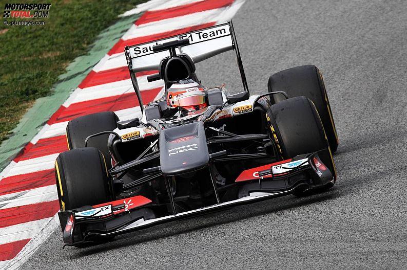 Formula 1- Season 2013 - z1361450442