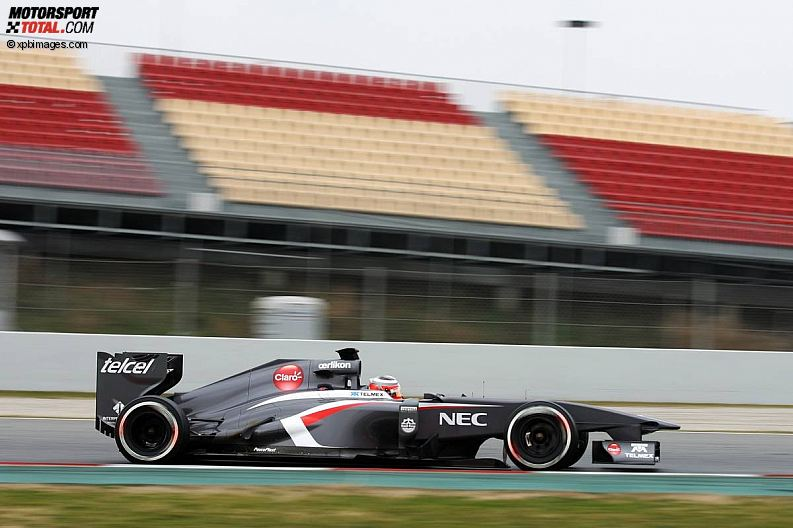Formula 1- Season 2013 - z1361451046