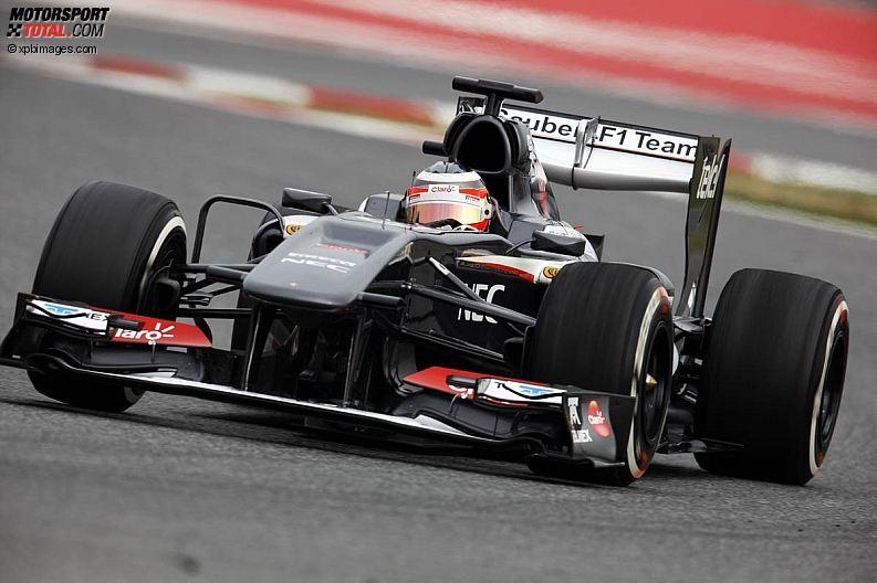 Formula 1- Season 2013 - z1361451671
