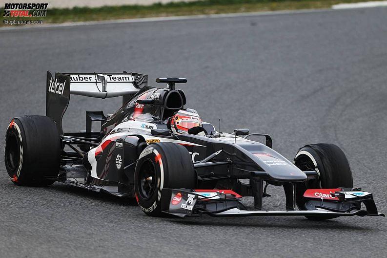 Formula 1- Season 2013 - z1361464949