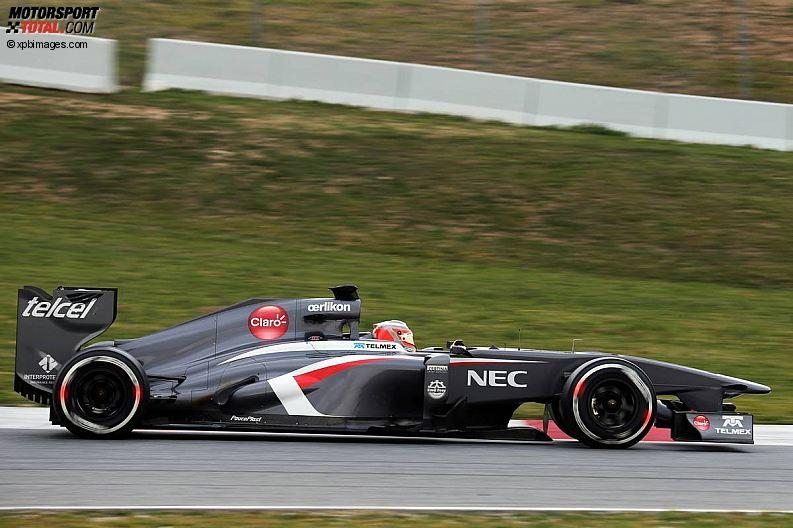 Formula 1- Season 2013 - z1361465515