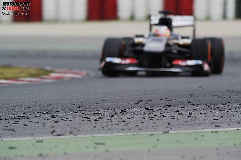 Formula 1- Season 2013 - z1361466716