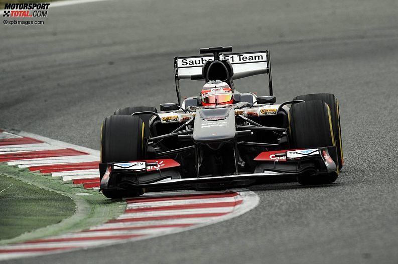 Formula 1- Season 2013 - z1361466837