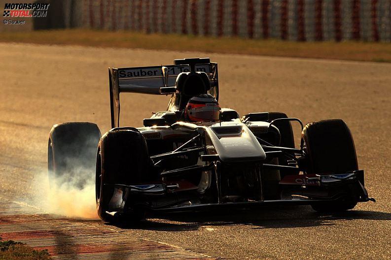 Formula 1- Season 2013 - z1361479831