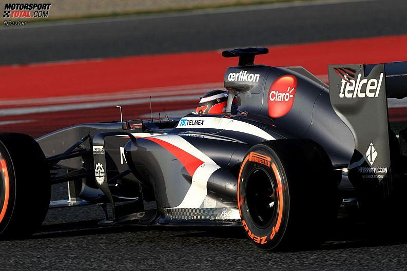 Formula 1- Season 2013 - z1361479844