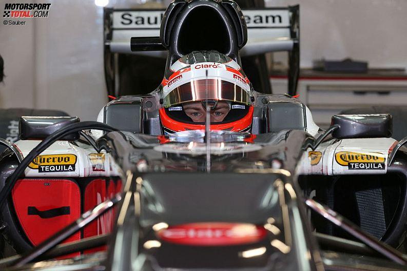 Formula 1- Season 2013 - z1361479893