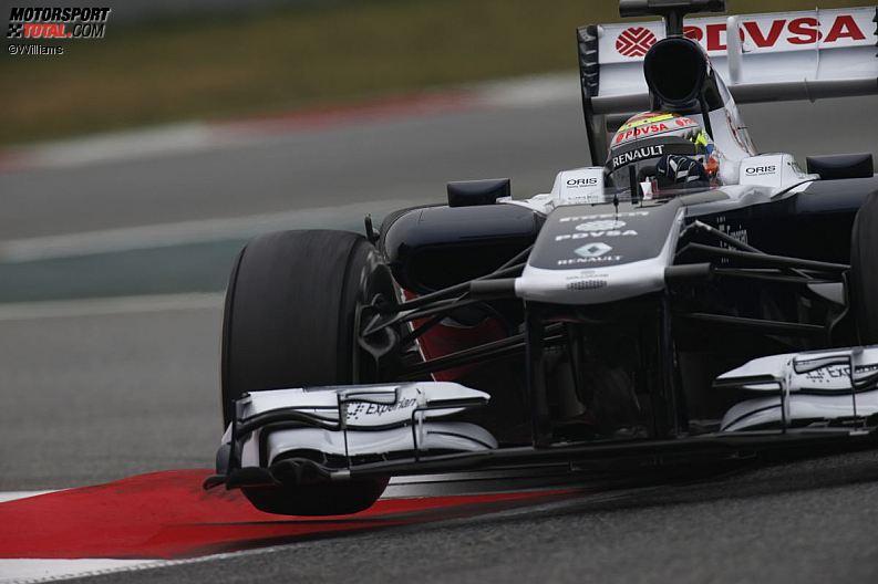 Formula 1- Season 2013 - z1361480317