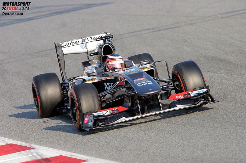 Formula 1- Season 2013 - z1361630655