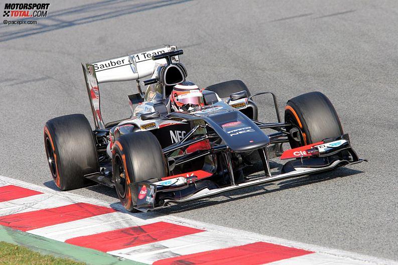 Formula 1- Season 2013 - z1361630791