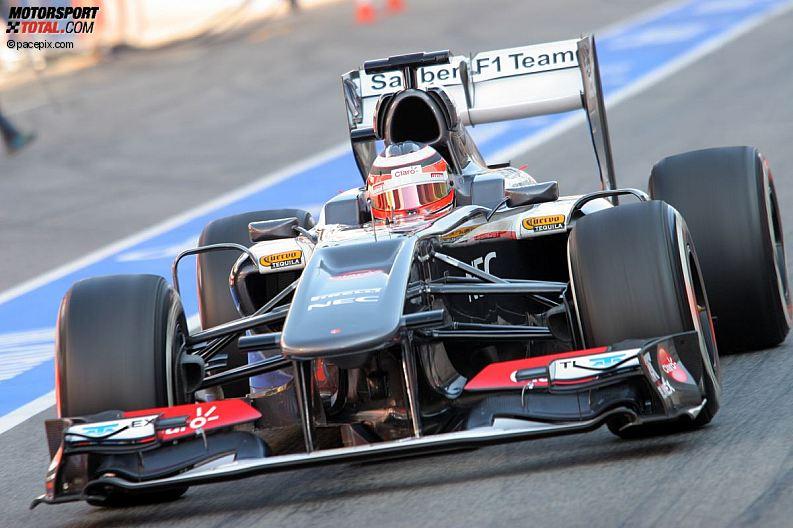 Formula 1- Season 2013 - z1361630892