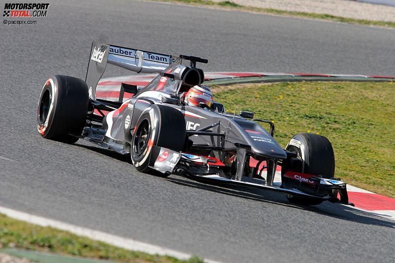 Formula 1- Season 2013 - z1361631086
