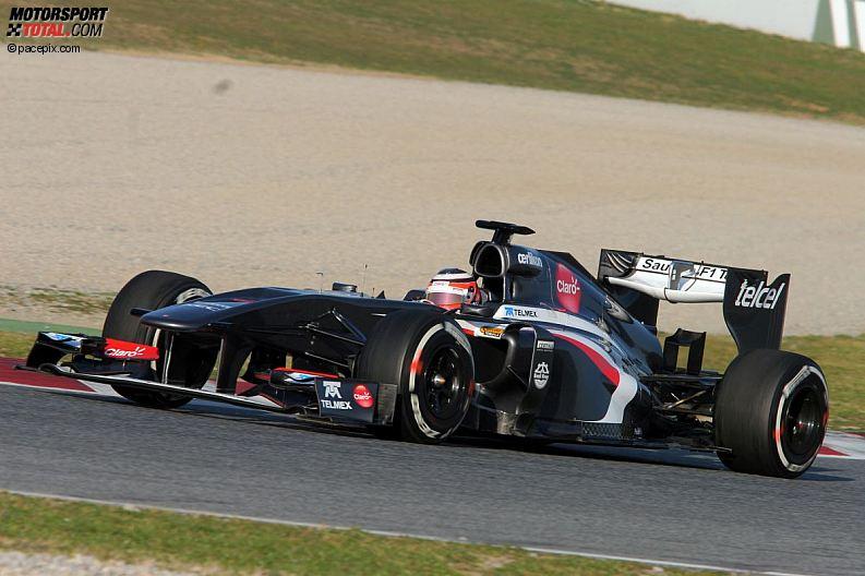 Formula 1- Season 2013 - z1361631134