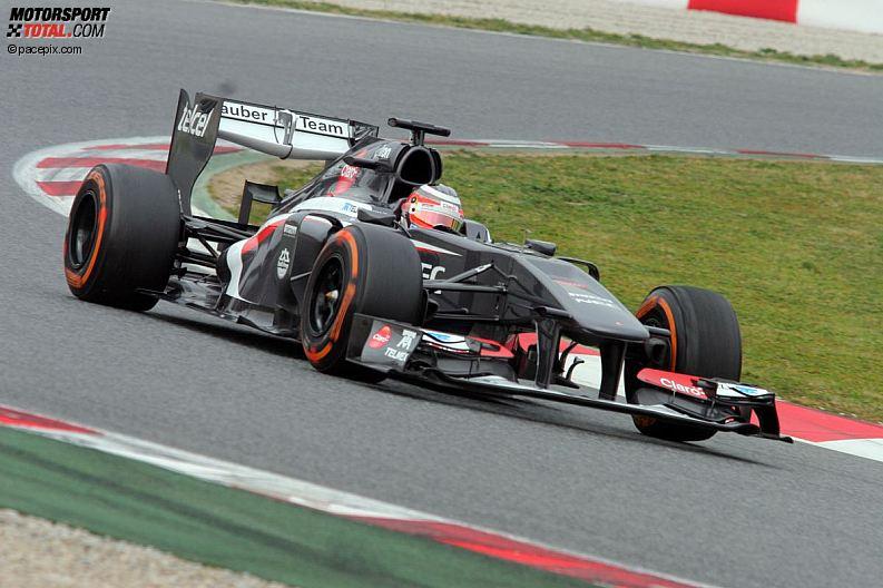 Formula 1- Season 2013 - z1361633570