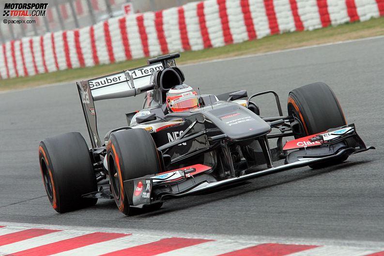 Formula 1- Season 2013 - z1361633614