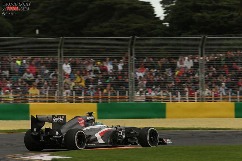 Formula 1- Season 2013 - z1363530421