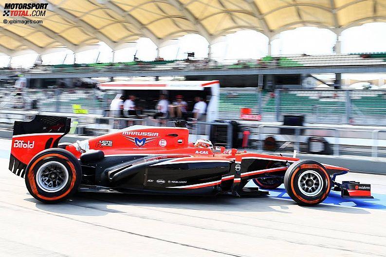 Formula 1- Season 2013 - z1363938604