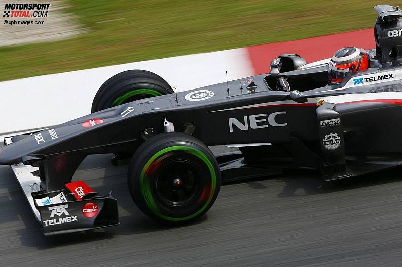 Formula 1- Season 2013 - z1363957833