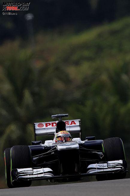 Formula 1- Season 2013 - z1363965619