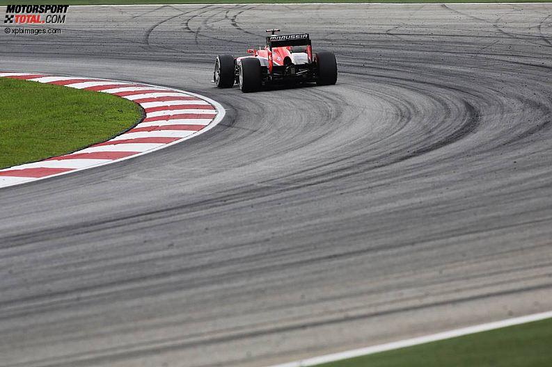 Formula 1- Season 2013 - z1364026808