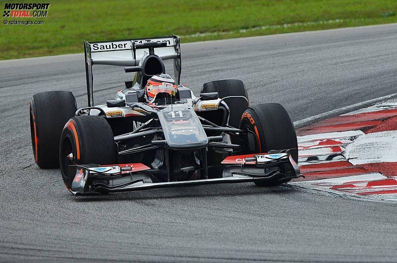 Formula 1- Season 2013 - z1364035824