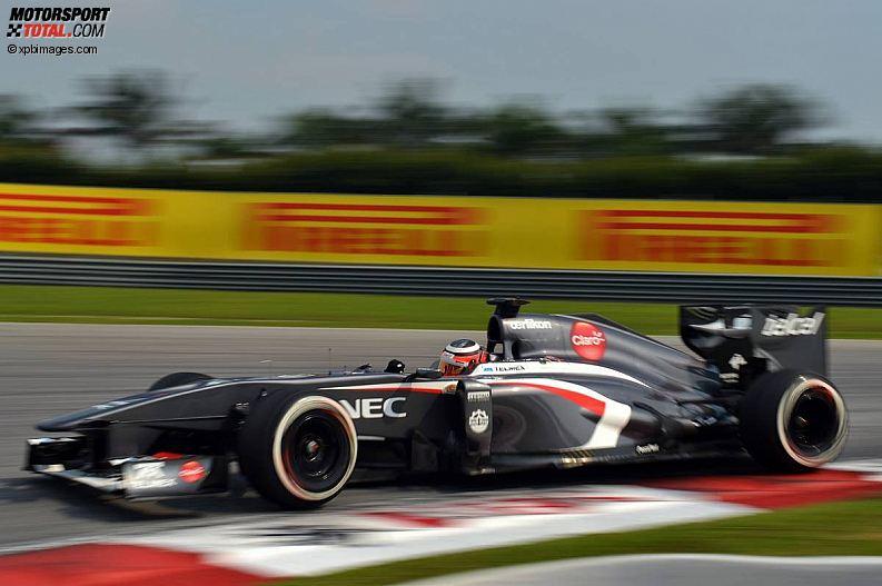 Formula 1- Season 2013 - z1364043621