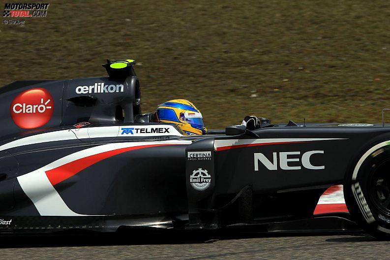 Formula 1- Season 2013 - z1365779061