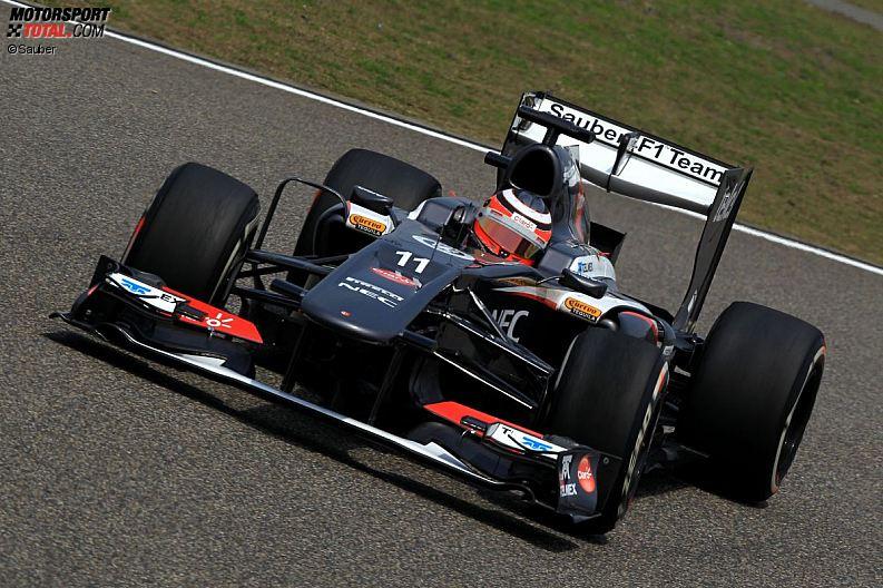 Formula 1- Season 2013 - z1365779148